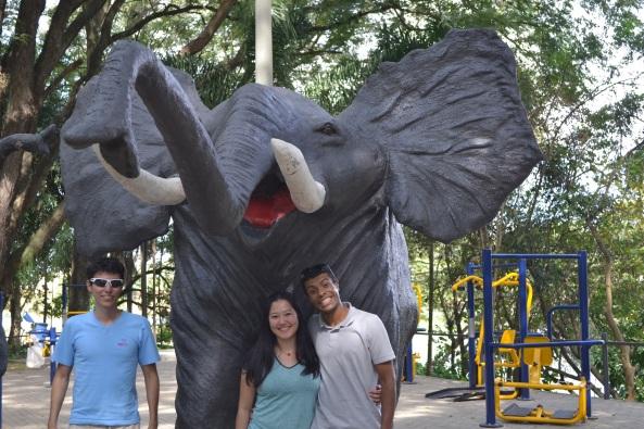 Parque Taquaral (2)