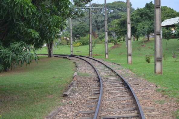 Parque Taquaral (56)