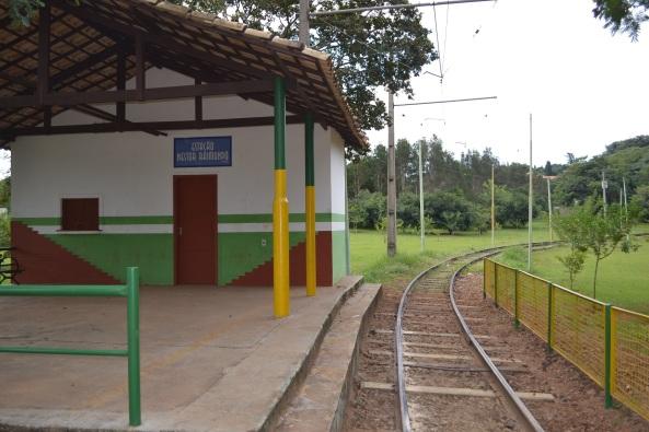 Parque Taquaral (57)