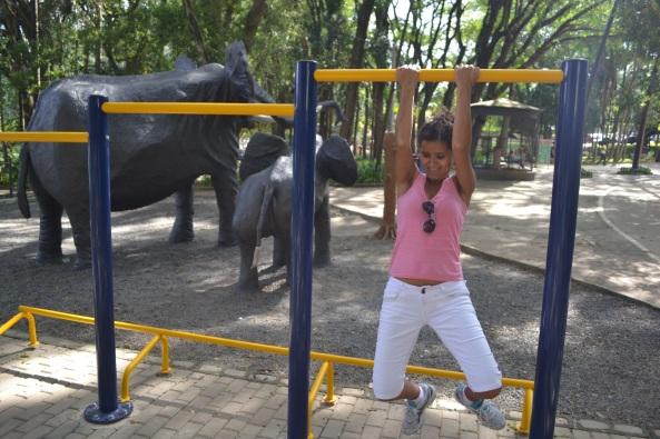 Parque Taquaral (6)