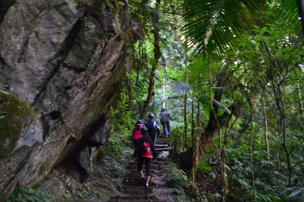 1 - Trilha do Morro Preto (11)