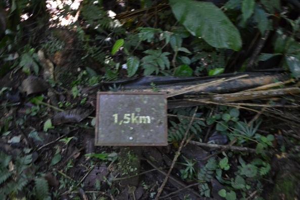 4 - Trilha Rio Betary (5)