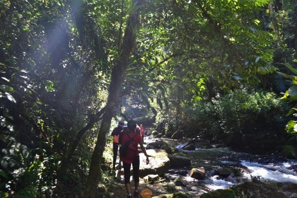 4 - Trilha Rio Betary (65)