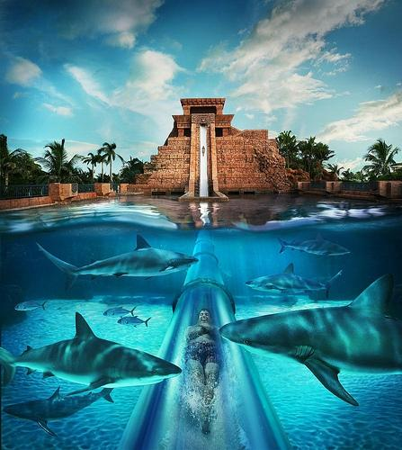 12 - aquaventure-water-park