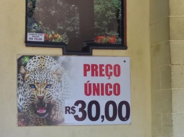Zoo Safari (34)